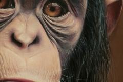 Animales-exóticos-detalle-1